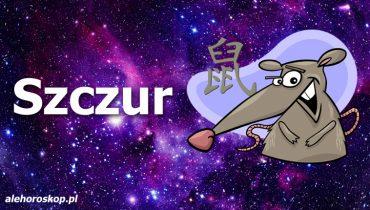 chiński znak zodiaku szczur