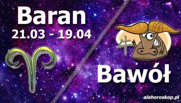 podwójna astrologia baran bawół