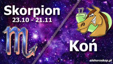 podwójna astrologia skorpion koń