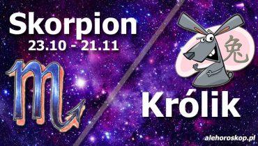 podwójna astrologia skorpion królik