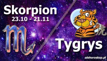 podwójna astrologia skorpion tygrys