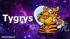 chiński znak zodiaku tygrys