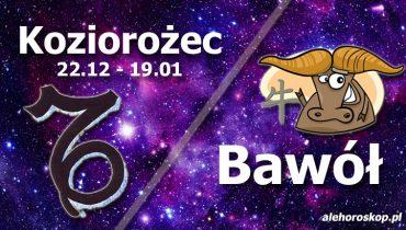podwójna astrologia koziorożec bawół