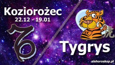 podwójna astrologia koziorożec tygrys