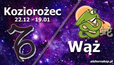 podwójna astrologia koziorożec wąż